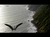Walking With Dinosaurs S1 Ep4 Giant of the Skies