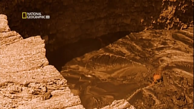 С точки зрения науки. Венера - зловещий близнец Земли