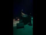 Павел Соколов  Live