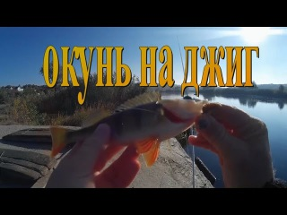 Рыбалка. Ловля окуня на джиг в октябре