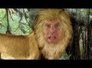 John C. Reilly Will Ferrell's Animal Choices
