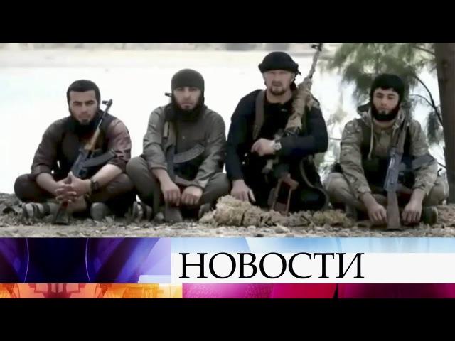 Российские ВКС уничтожили вСирии сразу нескольких главарей ИГИЛ.