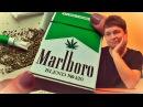 ШОК! РЕАЛЬНЫЕ С АНАШОЙ! Marlboro CANNABIS! Мальборо с марихуаной!
