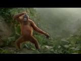 Орангутанг dance (Балаган Лимитед - Серёженька)