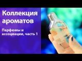 Моя коллекция парфюмов 2014  Ассоциации к ароматам, часть 1