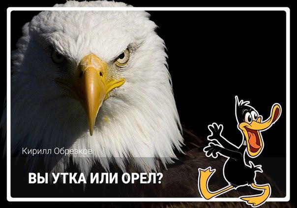 ⁉ВЫ УТКА ИЛИ ОРЕЛ⁉ ©[id17826172|Кирилл Обрезков]  Ответ 'Я человек'