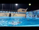 Дельфинарий в Архипо-Осиповк