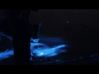 Живой свет с Дэвидом Аттенборо. Биолюминесценция  David Attenboroughs Light on Earth (2016) HD 720p - Док фильм