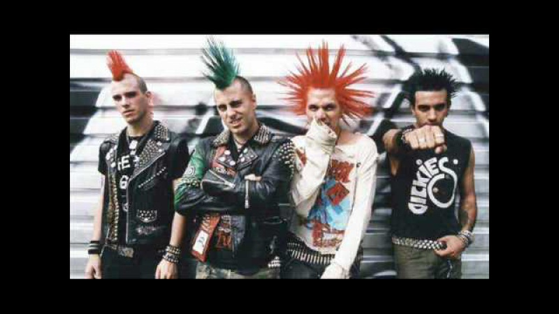 The Casualties - Punx Skins