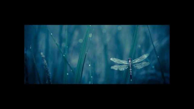 Adhitthana (Downbeat Chillgressive Mix) 2017