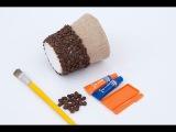 Как сделать кашпо из кофейных зерен