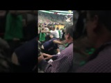FIST FIGHT- GAME 7 Eastern Conference Semifinals: Boston Celtics vs. Washington Wizards 5/15/17