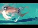 НОГИ БРАСС! КАК ДЕЛАТЬ ПРАВИЛЬНЫЙ УДАР НОГАМИ БРАССОМ? @Swimmate