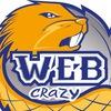 Студия продвижения и разработки сайтов Web Crazy