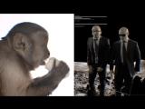 Sensato - Crazy People ft. Pitbull, Sak Noel!!!=)