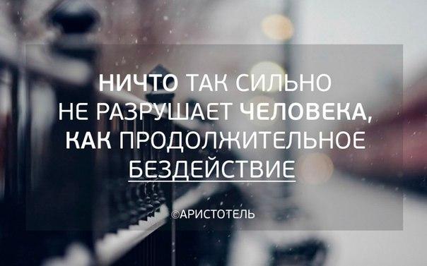 #молпред35 #молпред #molpred #molpred35