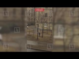 В сквере на Васильевском острове мужчина разделся перед прохожими(видео 18+)