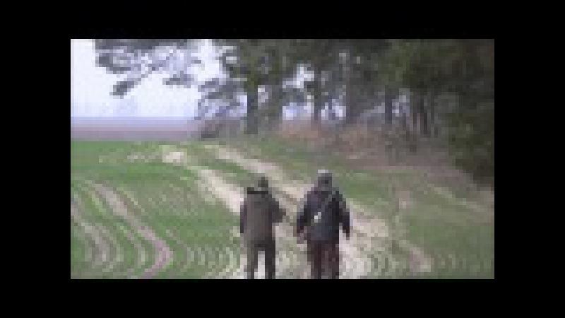 Охота на лис с русскими гончими у Ревы М А