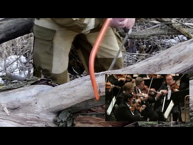Vivaldi - Handsaw Concerto