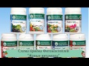 Схема приема Фитококтейлей Живые витамины . Рассказывает Н.Г. Байкулова
