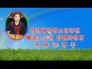 Игра на каягыме школьницы Хам Бёль (ТВ КНДР).