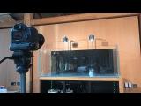 Live Nature Aquarium setup in Aquascaper 1500 (500 litres)
