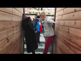 DON feat. Даша Суворова  Январское Лето 1080p