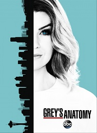 Анатомия страсти 1-13 сезон 1-19 серия FOX Life | Grey's Anatomy смотреть онлайн