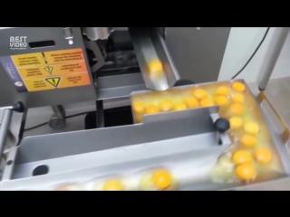 Процесс разделения белков и желтков в промышленном масштабе