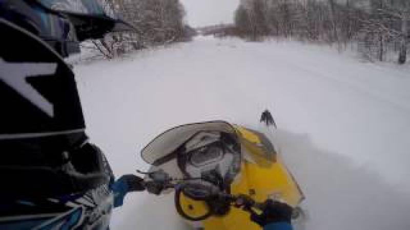 BRP Ski doo Tundra №4