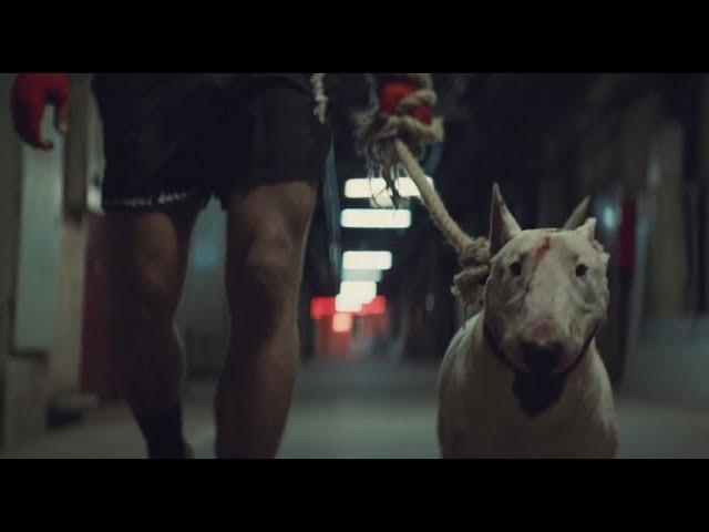 Бультерьер (2018) Тизер HD