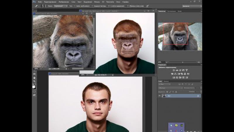как сделать из человека обезьяну фотошоп сs6
