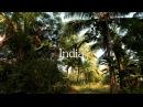 India, North Goa @ Pushkarev.film, oct 2016