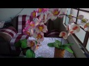 - DIY Orquídea de E.V.A sem frisador. moldada com um coco ou semente de abacate.