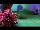 Enchantimals рус Энчентималс линейка игровых антропоморфных кукол от компанииМаттел спин офф серииEver After High