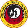 Школа единоборств «BUSHIDO» г. Сызрань