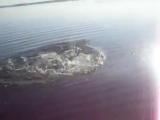 Рыбалка на щуку. Ловля щуки на спиннинг Краснооскольское водохранилище