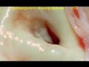 Аорта аортальный клапан вход в венечную артерию увеличение в х1000 раз