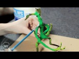 DIY Pickett the Bowtruckle by Martina Penazzi  J.K. Rowling's Wizarding World Fans