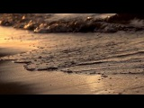 Beachfront B-Roll: Sunset Waves Close Up (Free to Use HD Stock Video Footage)