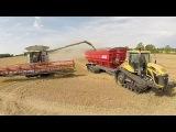 Harvest 2016 UK, Perard Interbin 46, Claas Lexion 770 &amp 760, Challenger MT765C, Fendt 724's.