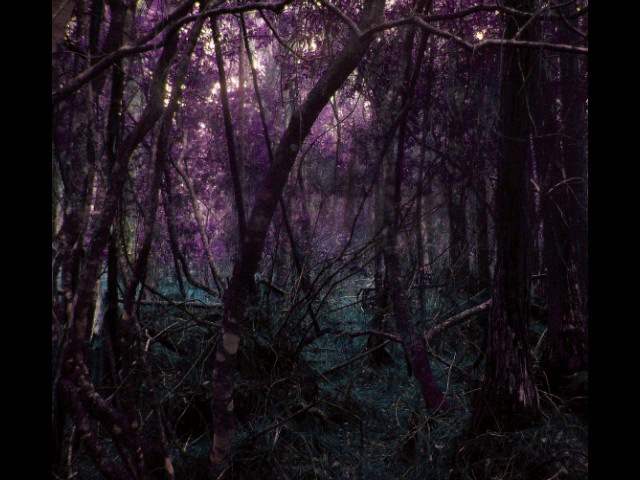Torched Ebony Skies - Tabula Rasa / Nocuous Keloid (Full Album)