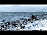 In Vain - Captivating Solitude (Official Video)