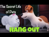 Фразовый глагол to HANG OUT with someone из мультфильма The Secret Life of Pets