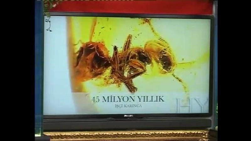 SN. ADNAN OKTAR'IN ADIYAMAN ASU, KRAL KARADENİZ RÖPORTAJI (2010.02.15)
