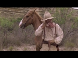 Одинокий голубь(2 серия) (320p).mp4 фильм вестерн по роману Ларри Макмертри
