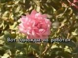Катя_Огонек_-_Лейтенантик(MusVid.net)