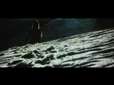 Dolphin - Дельфин - Снеговик