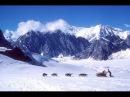 Alaska Luptă Pentru Supraviețuire l Film Documentar în Română