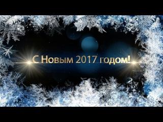 Новогодние поздравления от олимпийских чемпионов